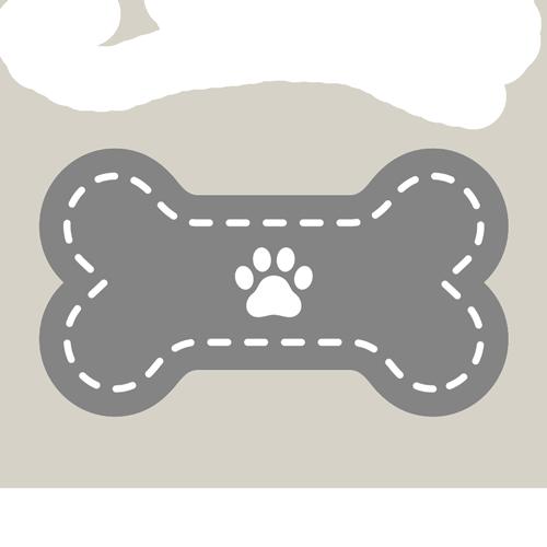 Informationen-für-Hundebesitzer-Wald-im-Pinzgau